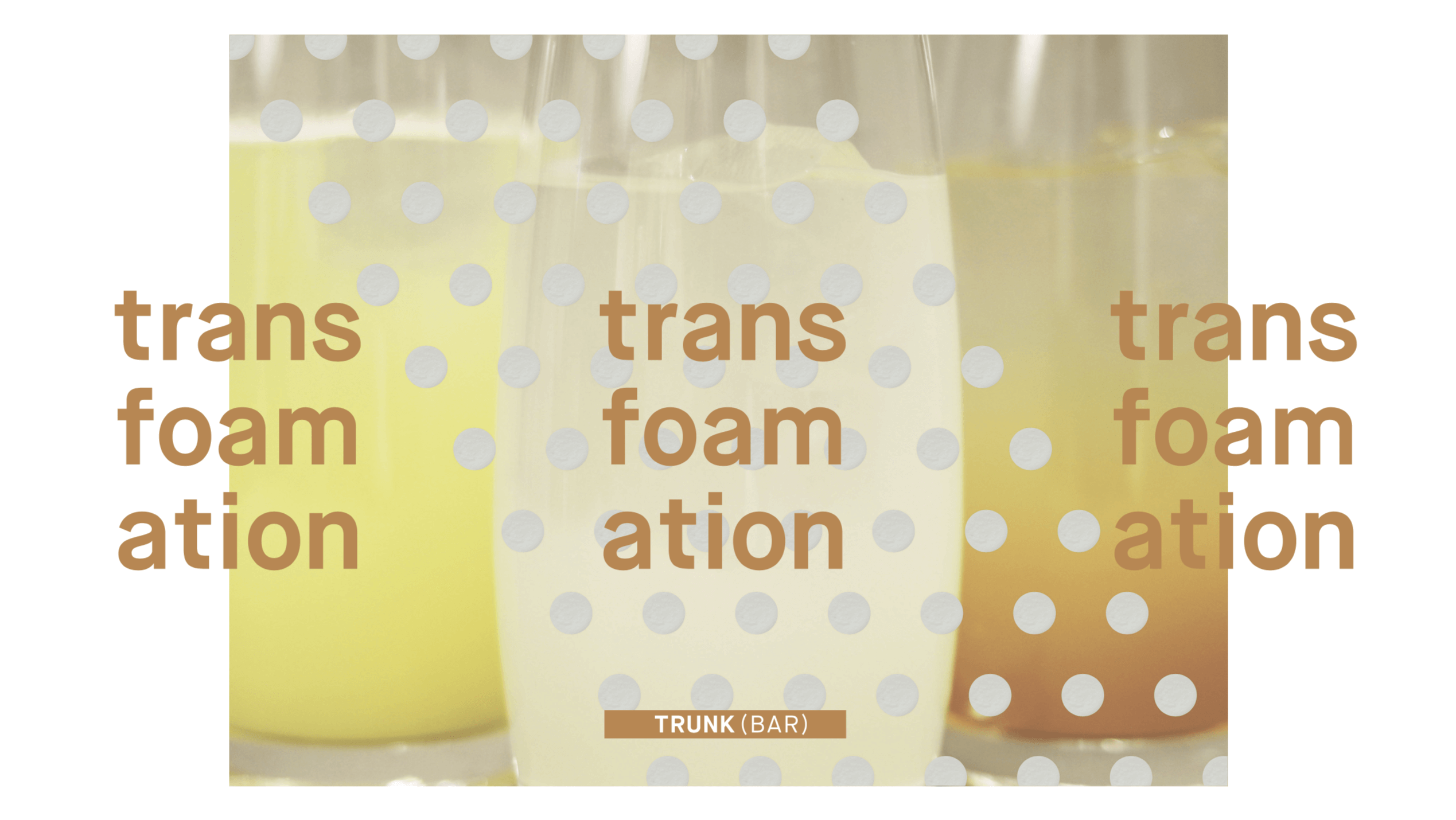 TRANS-FOAM-ATION